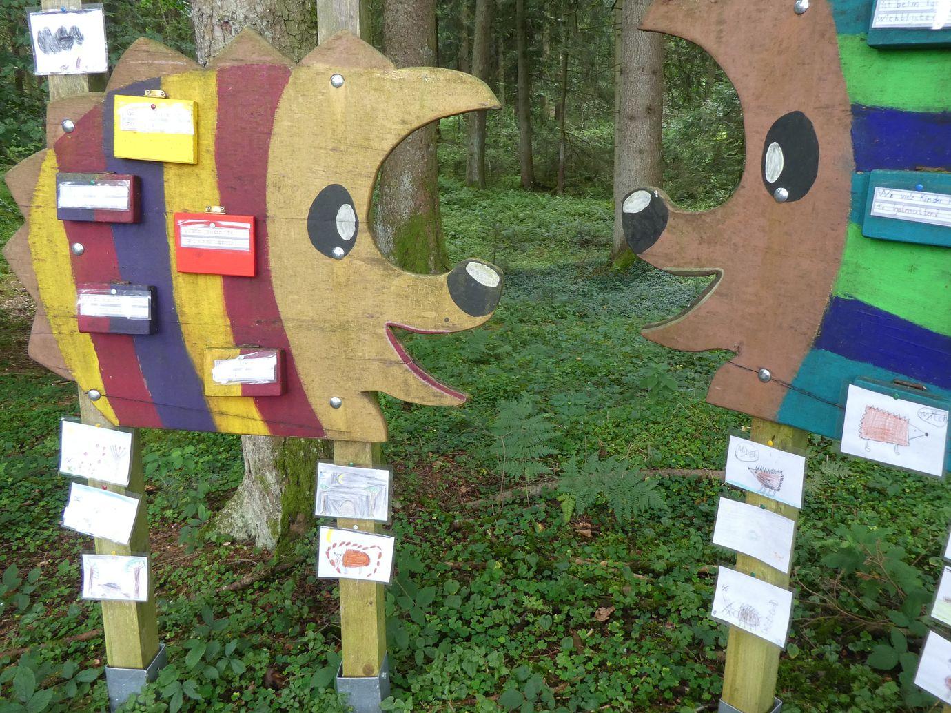 Umweltschulen im Landkreis: Kooperation mit der Grundschule Maierhöfen